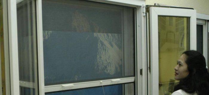 window roller fly screens