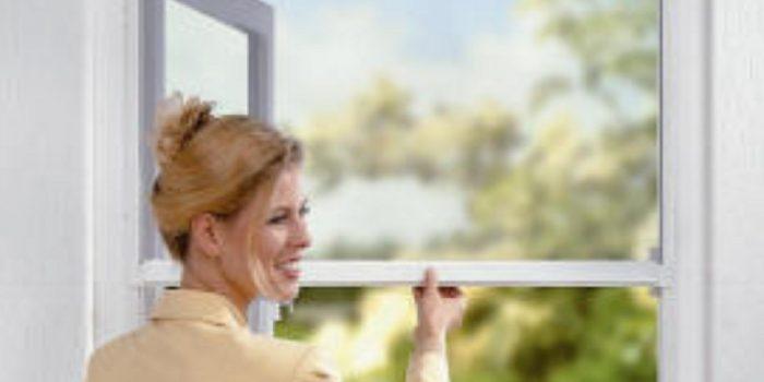 Window Flyscreens
